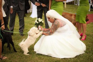 Pet Friendly Wedding Venues In Northern NSW