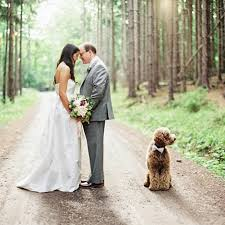 Pet Friendly Wedding Venues On The Sunshine Coast