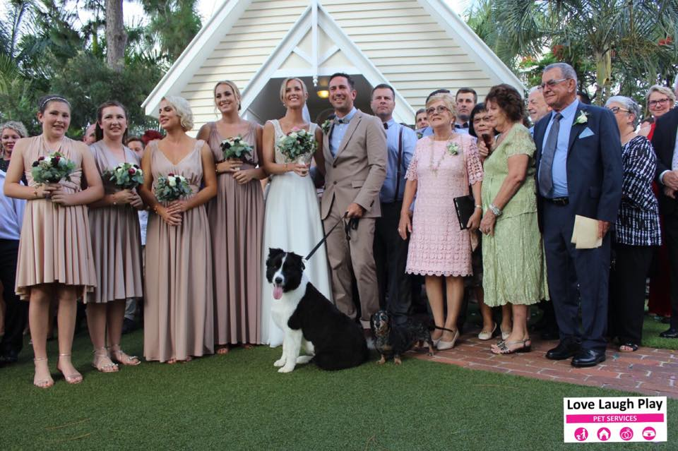 Kellie and Andrews PAWFECT Wedding