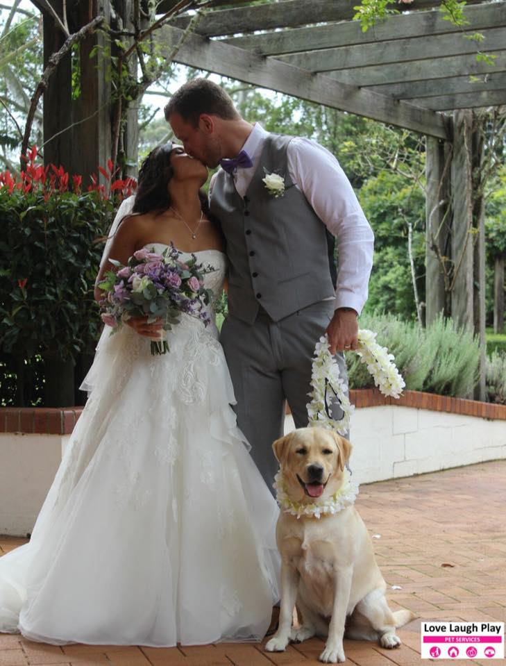 Stacey and callums surprise wedding guest pet wedding attendant stacey and callums surprise wedding guest junglespirit Image collections